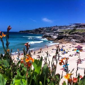 Bonte Beach, Sydney, Australia